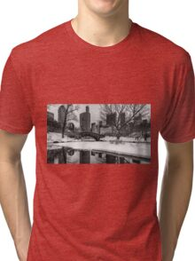 Winter Fun at the Gapstow Tri-blend T-Shirt