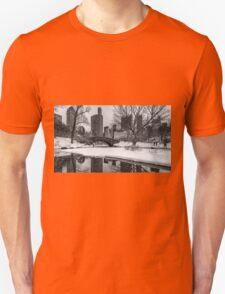 Winter Fun at the Gapstow T-Shirt