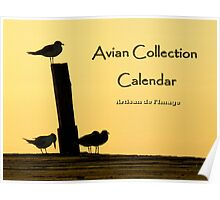 Avian Collection Calendar Cover Poster