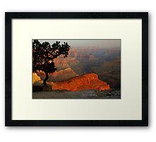 Grand Canyon Morning 3 Framed Print