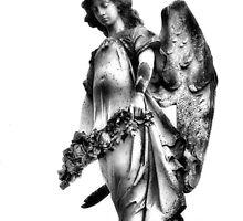 Winged by SuddenJim