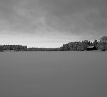 Winter land by Mark Williams