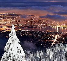 Vancouver city from Grouse Mountain by Pierre Leclerc Photography