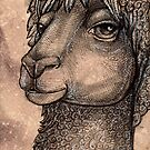 The Alpaca by Lynnette Shelley