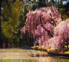 Love Poem - Brooklyn Botanic Garden - New York City by Vivienne Gucwa