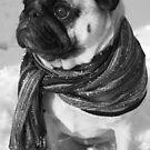 Snow Pug by Rebecca Reist