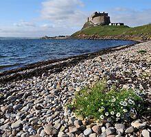 Lindisfarne Castle by Pete  Burton