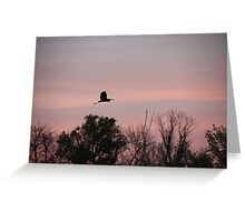 Great Blue Heron on Pink Sky Greeting Card