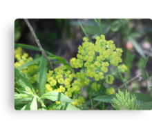 Flowers of Green Metal Print