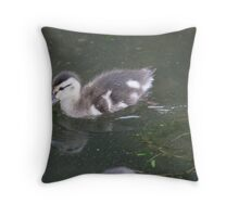 Ducklings on Lake Monona Throw Pillow