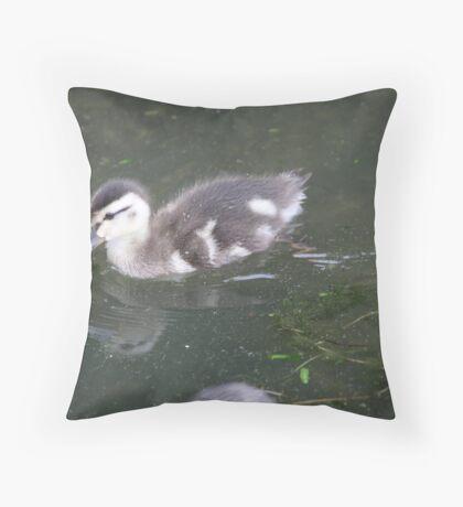 Ducklings on Lake Monona Throw Pillow