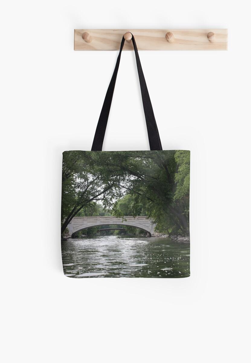 The Yahara River by Thomas Murphy