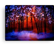 Shadowed Land.... Canvas Print