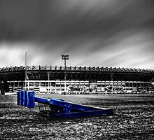 Murrayfield Stadium, Edinburgh, Scotland Selective Colouring by Den McKervey