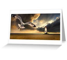 soaring inshore Greeting Card