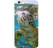 Turtle gaze iPhone Case/Skin