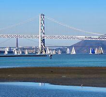 Sailing San Francisco Bay by David Denny