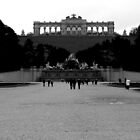 Schonbrunn Palace - The Fountain by rsangsterkelly