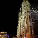 St.Stephansplatz by rsangsterkelly