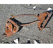 Rusty Fish Skeleton Photographic Print
