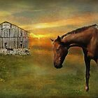Horse and Barn - Revised by jules572
