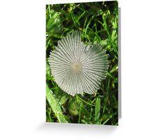 Wispy Fungus Greeting Card