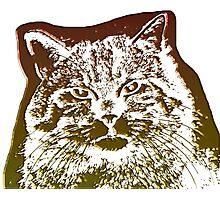 wild cat, 3d Photographic Print