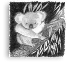 Koala at Night Pencil Sketch Canvas Print