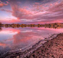 Off Shore Pink by Bob Larson