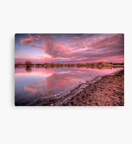 Off Shore Pink Canvas Print