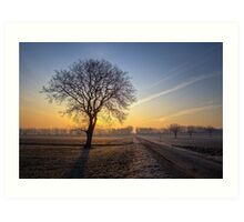 ~Frosty Morning~ Art Print