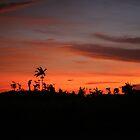 El Arish Sunrise by STHogan