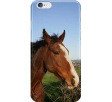 Horse Phone iPhone Case/Skin