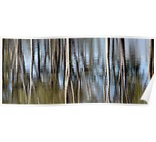 Silvery reflections Poster