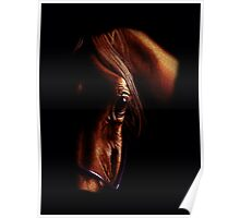 The eye of the horse (colored pencil drawing) Poster