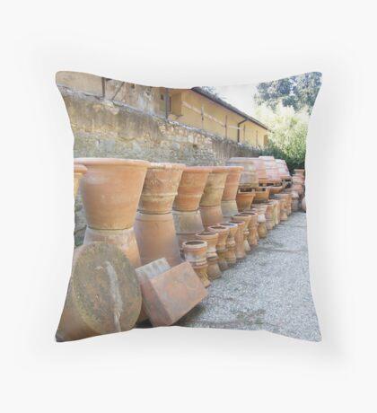 Terracotta pots Throw Pillow