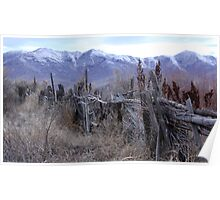Old Rugged Fence Poster