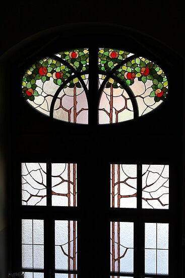 Window With Some Flair by karina5