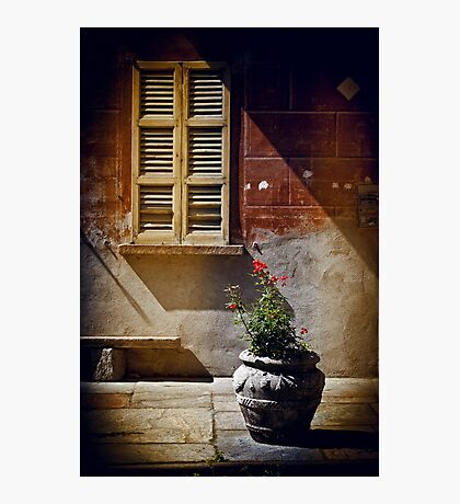 Vase, window and shadows Photographic Print
