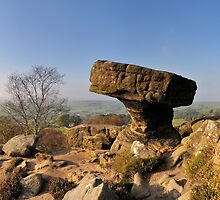 Mushroom, Brimham Rocks by Simon Bowen