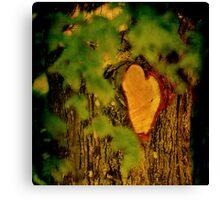 Natures own Valentine (wooden heart) Canvas Print