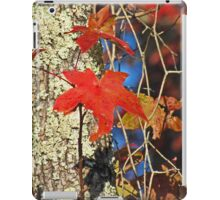 Red Maple Leaves in Autumn iPad Case/Skin