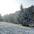 Winter in my street by Ana Belaj
