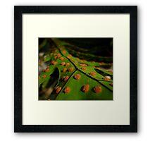 Green base Framed Print