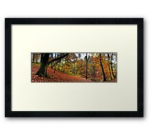 Autumn in Sunnydale Framed Print