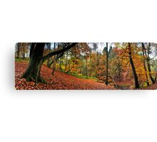 Autumn in Sunnydale Canvas Print