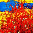 Red Reeds By The Lake by Fara