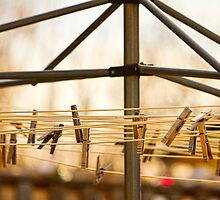 Clothespins on the Line by Bo Insogna