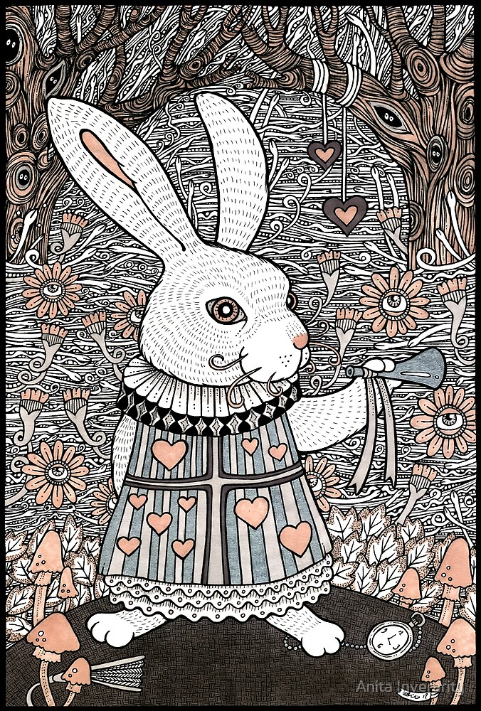 The White Rabbit by Anita Inverarity