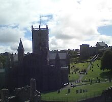 St Davids Cathedral by Natalie  Parsons